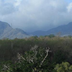 Бали-Барат