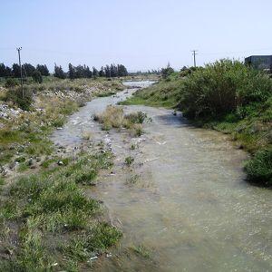 Река Курис